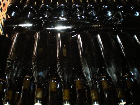 本日瓶詰したワイン